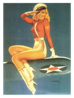 Air Force Poster